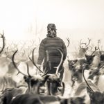 Speech by Per-Olof Nutti: Large Carnivores from the Perspective of Reindeer Herding