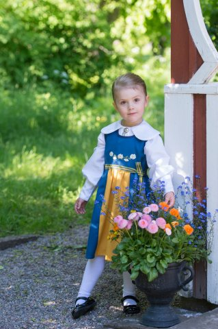 Grattis på Nationaldagen Sverige !